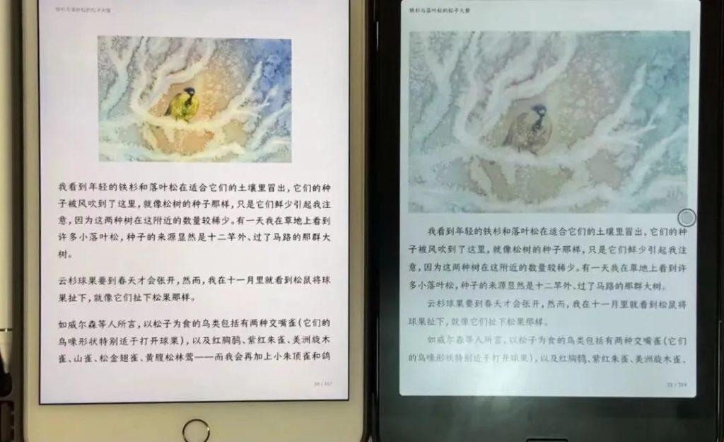 Boox Nova3 Color 與 iPad Mini 的對比  圖文小說